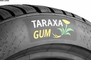 continentals dandelion tyres